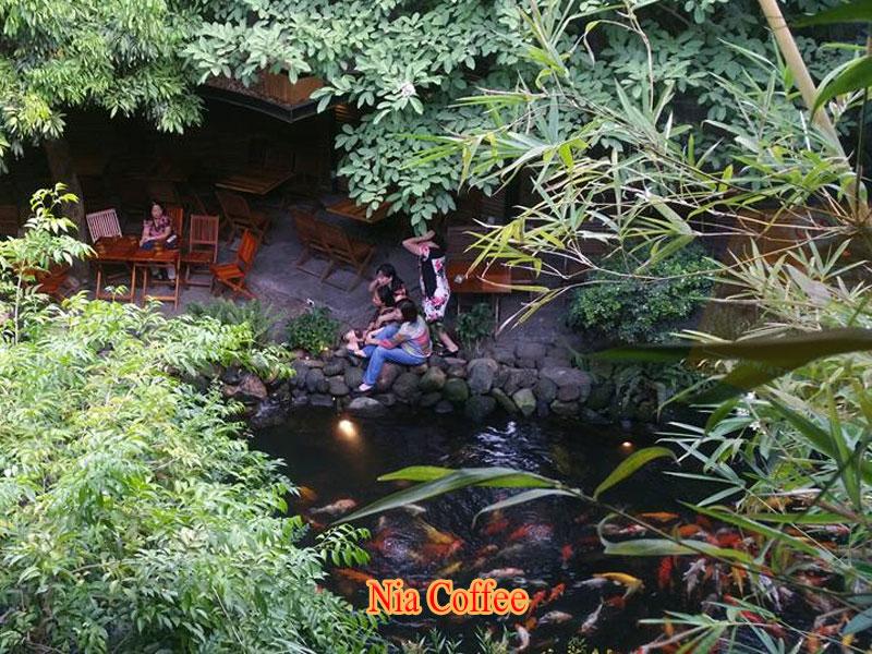 nia cafe Địa chỉ: 3/12 Phan Thành Tài, Quận Hải Châu, Đà Nẵng